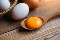 куриные яйца желток